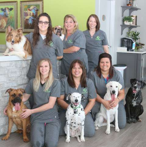 Riverstone Animal Hospital: Shannon Melliere, DVM